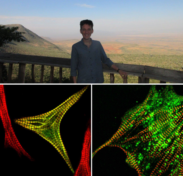 Top image shows Matt Tyce, a PhD student secondee at the Open Innovation Team, with a view of the Rift Valley in Kenya behind him. Bottom image shows biological cells lit up against a black background